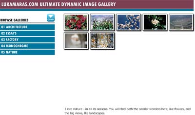 An example of the image gallery. Click it to see it in action!